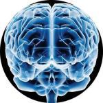 El movimiento de la neurodiversidad: buenas intenciones pero una pobre base científica