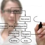 Fundación Autismo Diario: Proyectos 2013