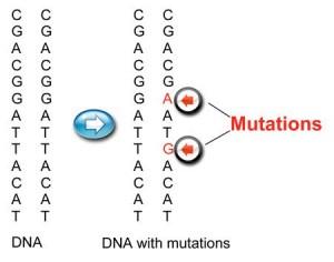 Mutations_chart