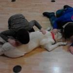 Fallece Guinness, una preciosa perra de asistencia para niños con Autismo