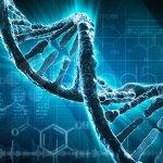 Genética del autismo ¿Qué sabemos?