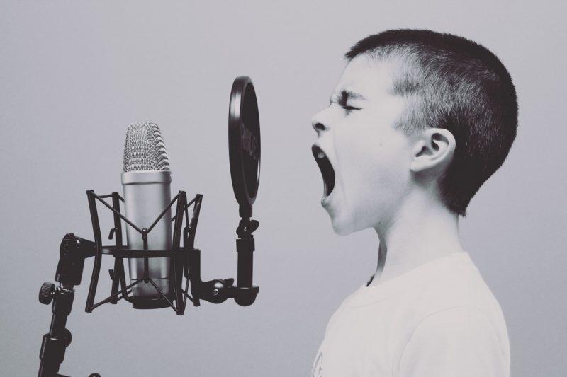 La «Talking cure» et l'autisme. Yves Vanderveken