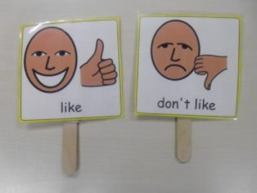 like and don't like lolly sticks