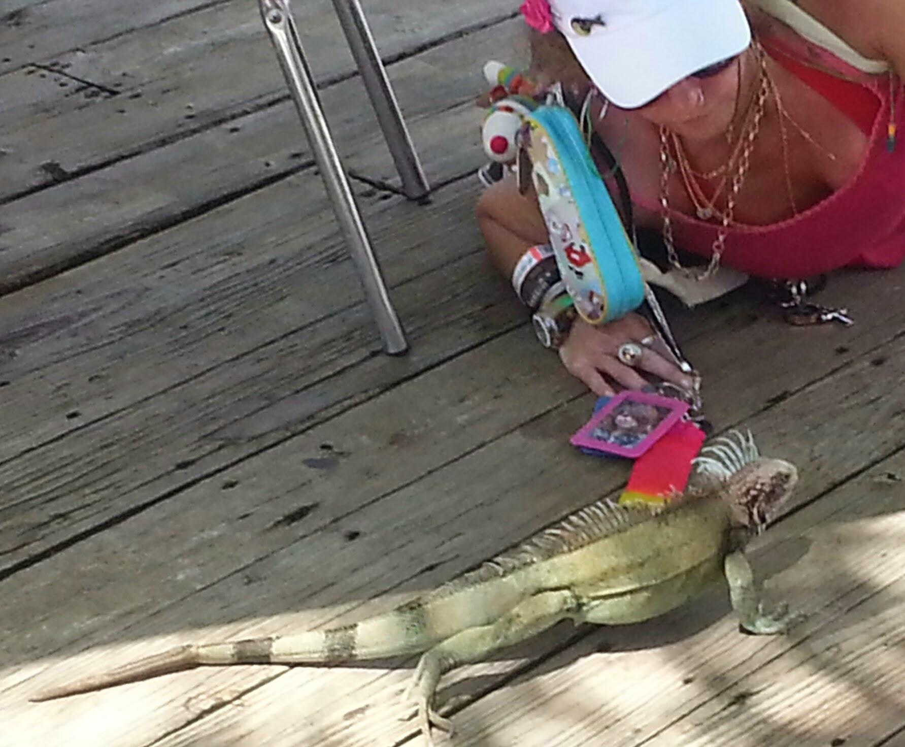 me and wild iguana