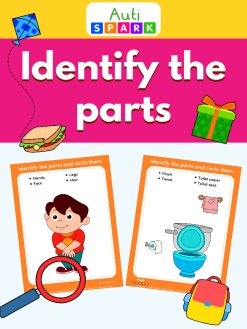 Identify & Match The Objects - Free Activity Workbook : 1