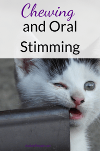 Chewing and oral stimming pin
