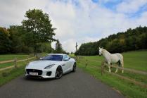 Test-Jaguar-F‑Type-400-Sport-AWD-Coupe- (8)