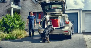 2019_FORD_FOCUS_DOGBOX_2