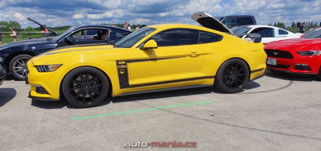 mustang-riders-sprinty-2019-ford-mustang- (35)