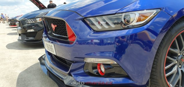 mustang-riders-sprinty-2019-ford-mustang- (56)
