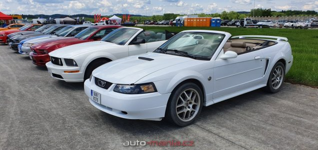mustang-riders-sprinty-2019-ford-mustang- (71)