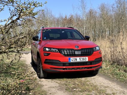 test-2019-skoda-karoq-sportline-15-tsi-110-kw-act- (1)