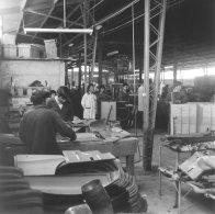 pred-50-lety-skoda-octavia-combi-vyroba-v-chile-amerika- (2)