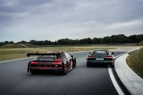 Audi R8 green hell (22)