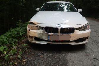 nehoda-se-zveri-4