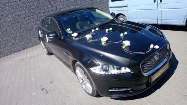 Jaguar XJ białe różyczki