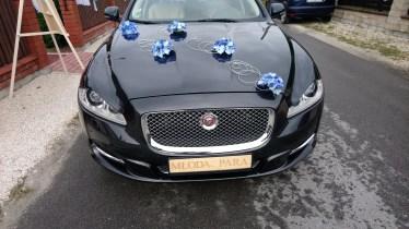 Jaguar XJ Kraków dekoracja niebieska