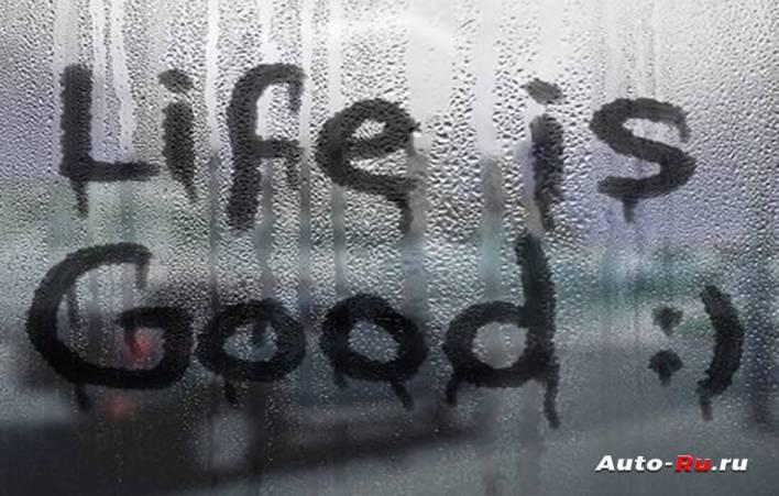 Жизнь прекрасна! Ничто не должно её омрачать, даже запотевшие стекла!