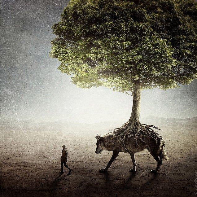 «Les forêts précèdent les hommes, les déserts les suivent.» - MONALBUMDELOUPS.skyrock.com