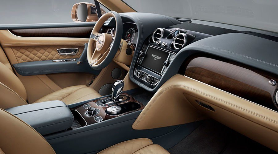 Latest Mushroom Jellyfish Leather Interior Bentley Eyes Free Download
