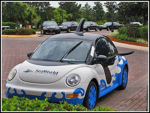 Latest I M Not A Beetle I M A Killer Whale A Vw New Beetle Free Download