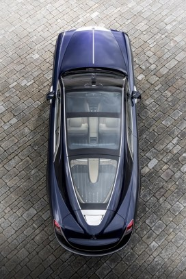 sweptail-1
