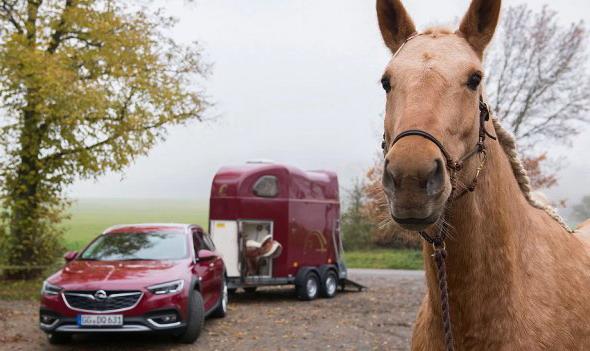 Opel Exclusive boja