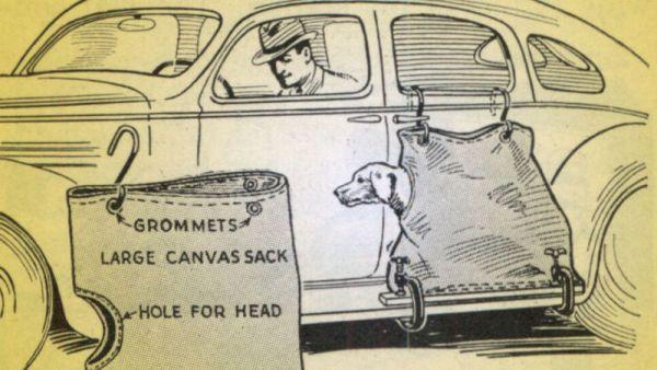 Dog sacks