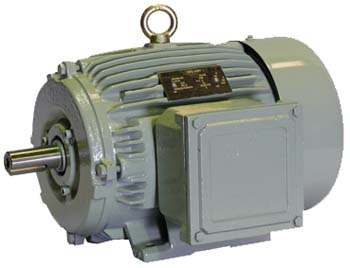 Crompton 10HP 2Pole Foot Mounted Induction Motor in India