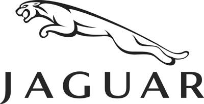 Jaguar:Shabby Paper