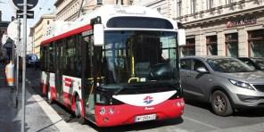 В Житомире планируют выпускать электробусы