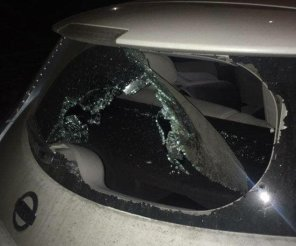 Проблему краж зарядок из электромобилей в Киеве донесли до руководства полиции
