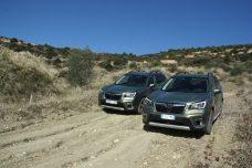Subaru Forester e-BOXER autoholix 16