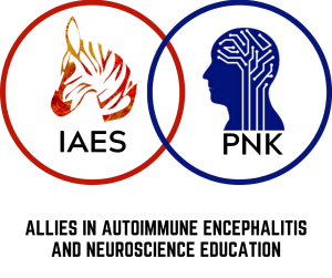 IAES PNK Partnership logo 300x251 - The Unique Nature of Seizures in Autoimmune Encephalitis