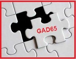 GAD65 puzzle piece