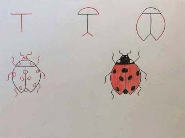 ladybug - Cognitive Exercises for AE Patients