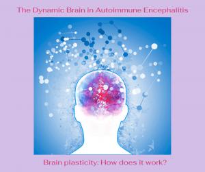 Brain plasticity handout image Facebook Post e1601076705179 - Autoimmune Encephalitis Handouts and Fact Sheets