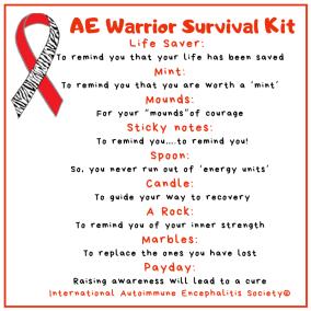 AE Warrior Survival Kit 2  4 x 4  Social Media Post - Downloads