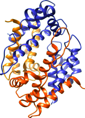 calprotectin_structure