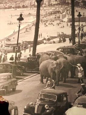 parade cirque Pinder quai des Etats-Unis avec les éléphants