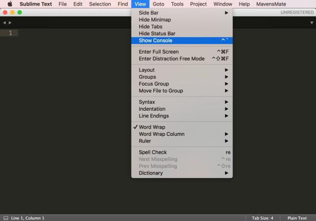 Open Sublime Text Console