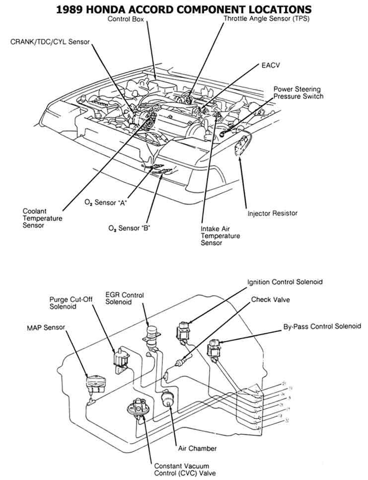 86 accord wire diagram