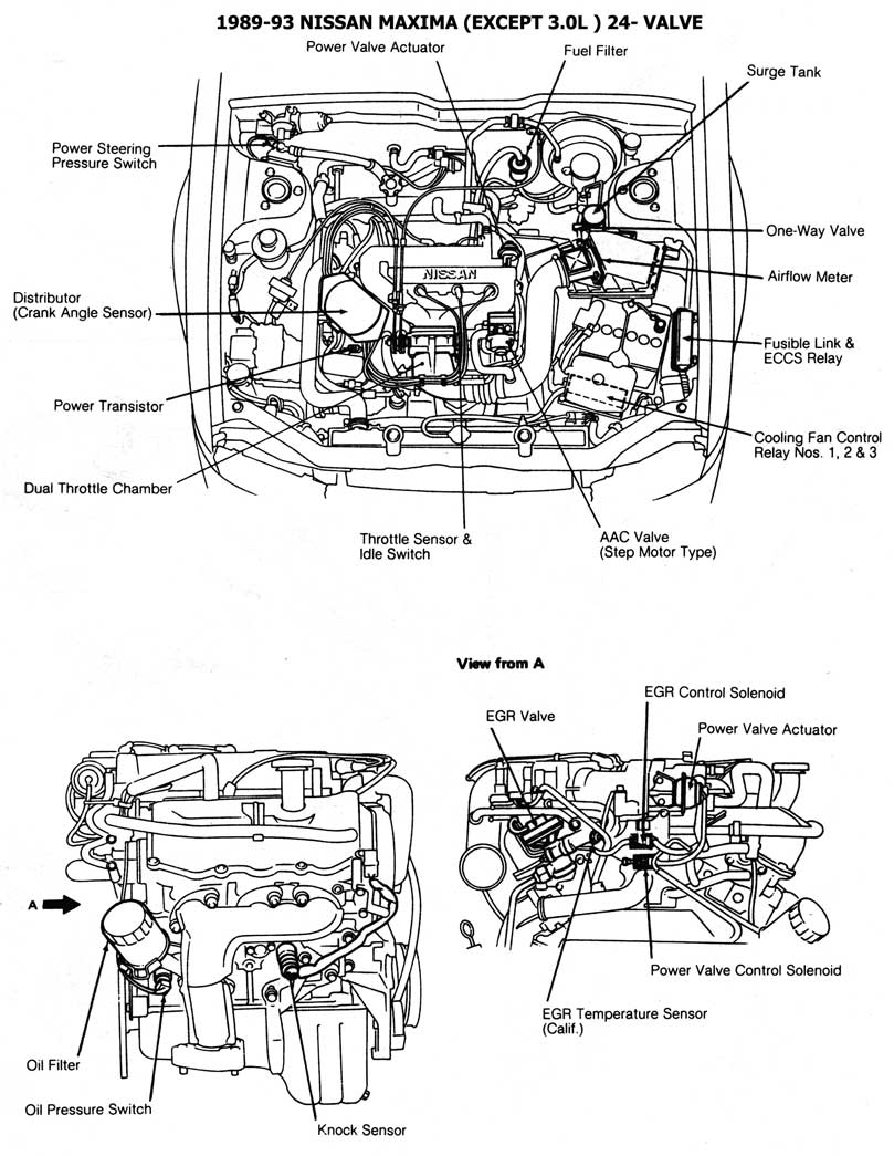 1991 nissan sentra engine diagram