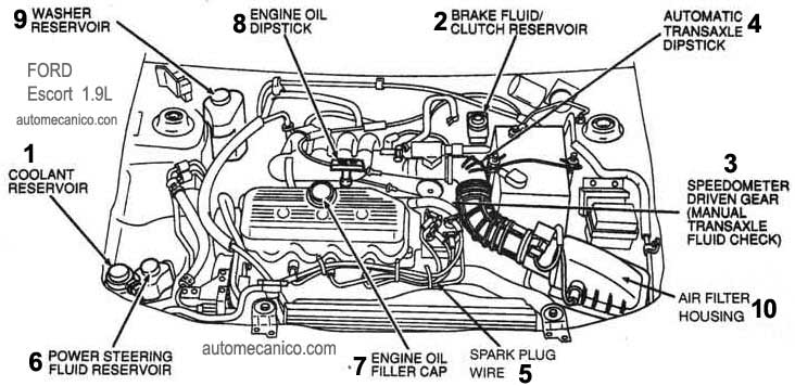 2002 ford escort zx2 manual transmission fluid Sex treff