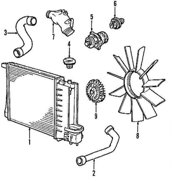Ремонт БМВ 3 : Система охлаждения двигателя BMW 3 (E46)