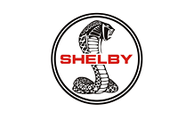 shelby_0
