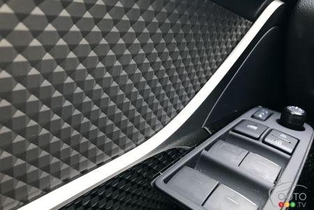 2020 Toyota C-HR, interior, door panel