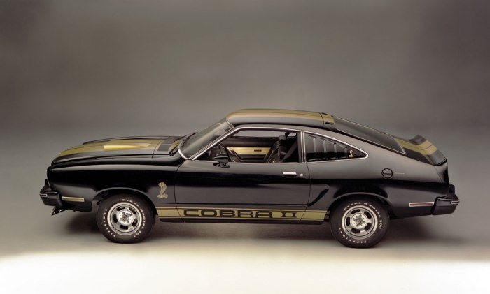 Mustang_II-(6)