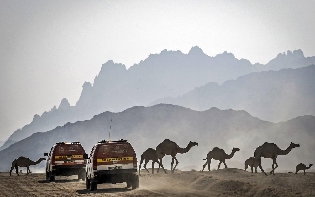 Dakar 2020: Arabia Saudita en primera persona