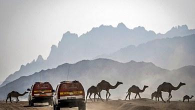 Photo of Dakar 2020: Arabia Saudita en primera persona